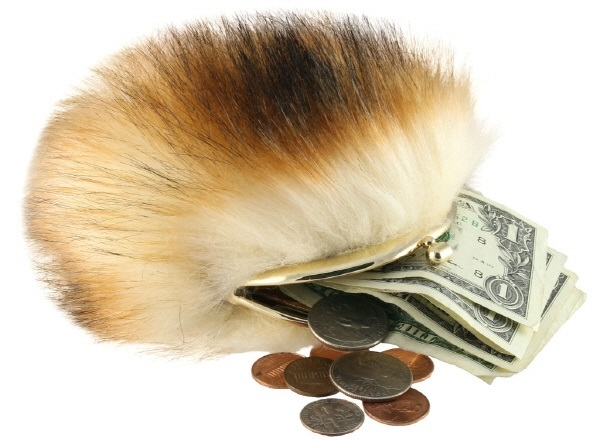 The Coop Star Trek Tribble Coin Purse Review