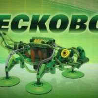Thames and Kosmos Geckobot Wall Climbing Robot Toy Review